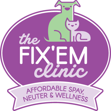 The Fix'Em Clinic