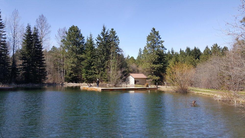 Swim & Fish Pond