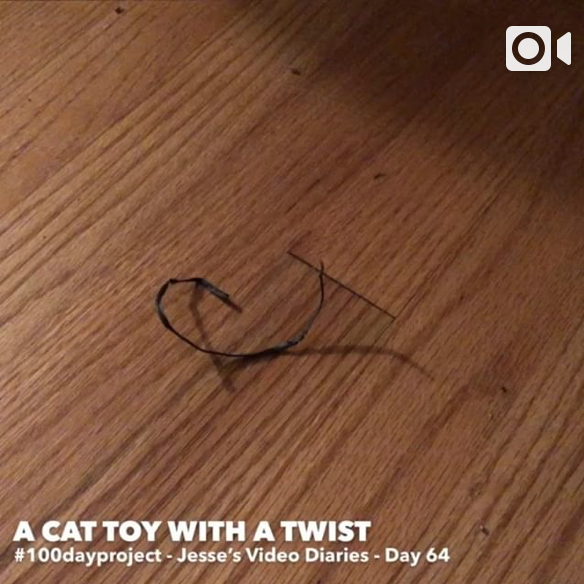 DAY 64A CAT TOY WITH A TWIST -