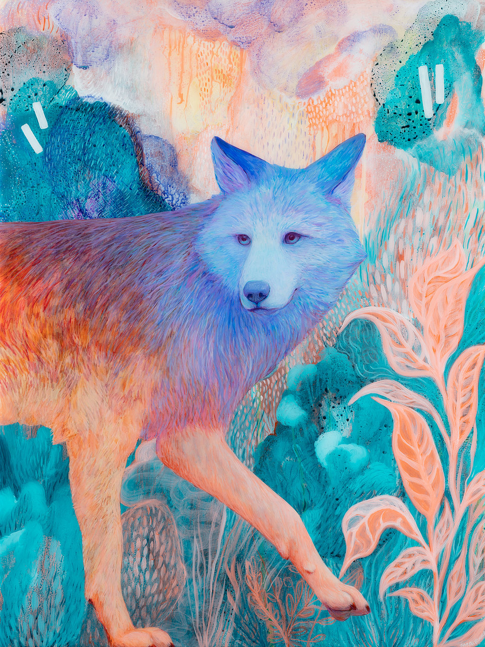 Zen Coyote , 2018. Coloured pencil, acrylic, and resin on wood panel, 24x18 inches