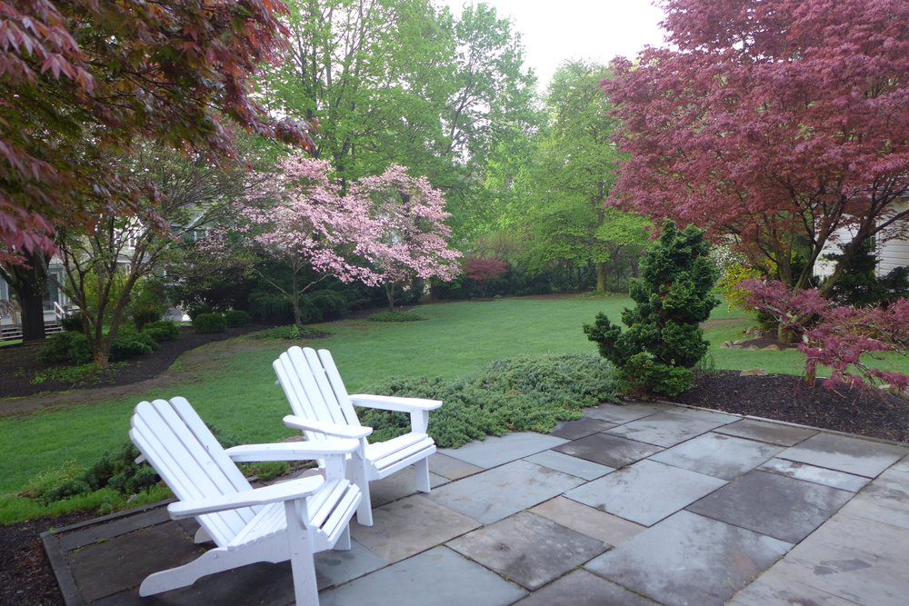 Patio with recliners and blooming dogwoods in lower yard.jpg