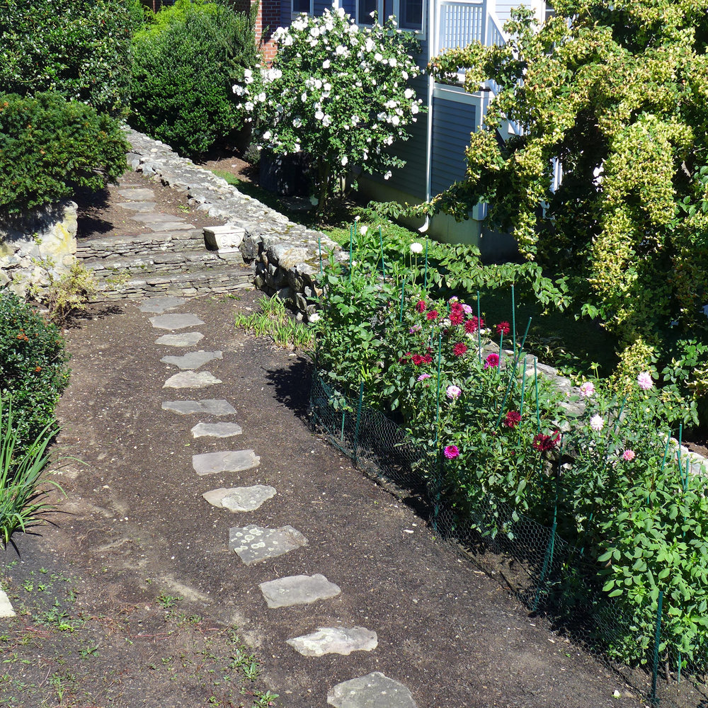 Dahlia bed and stone walk.jpg