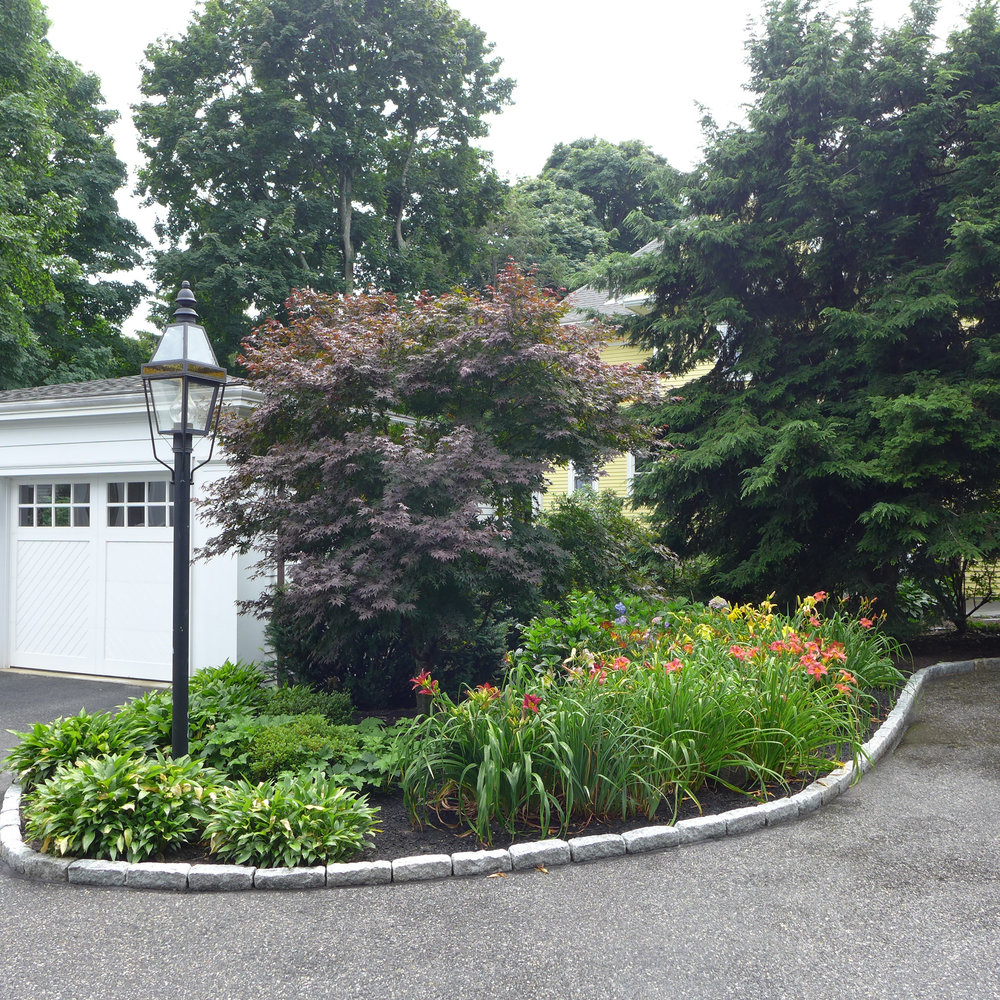 Post lamp with day lilies and hostas and corner of parking area.jpg
