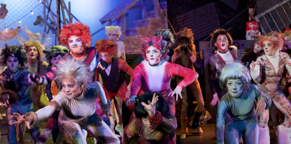 Cast members from SOCSA's Spring 2018 production of  Cats.  Photo Credit: Lynn Lindborg
