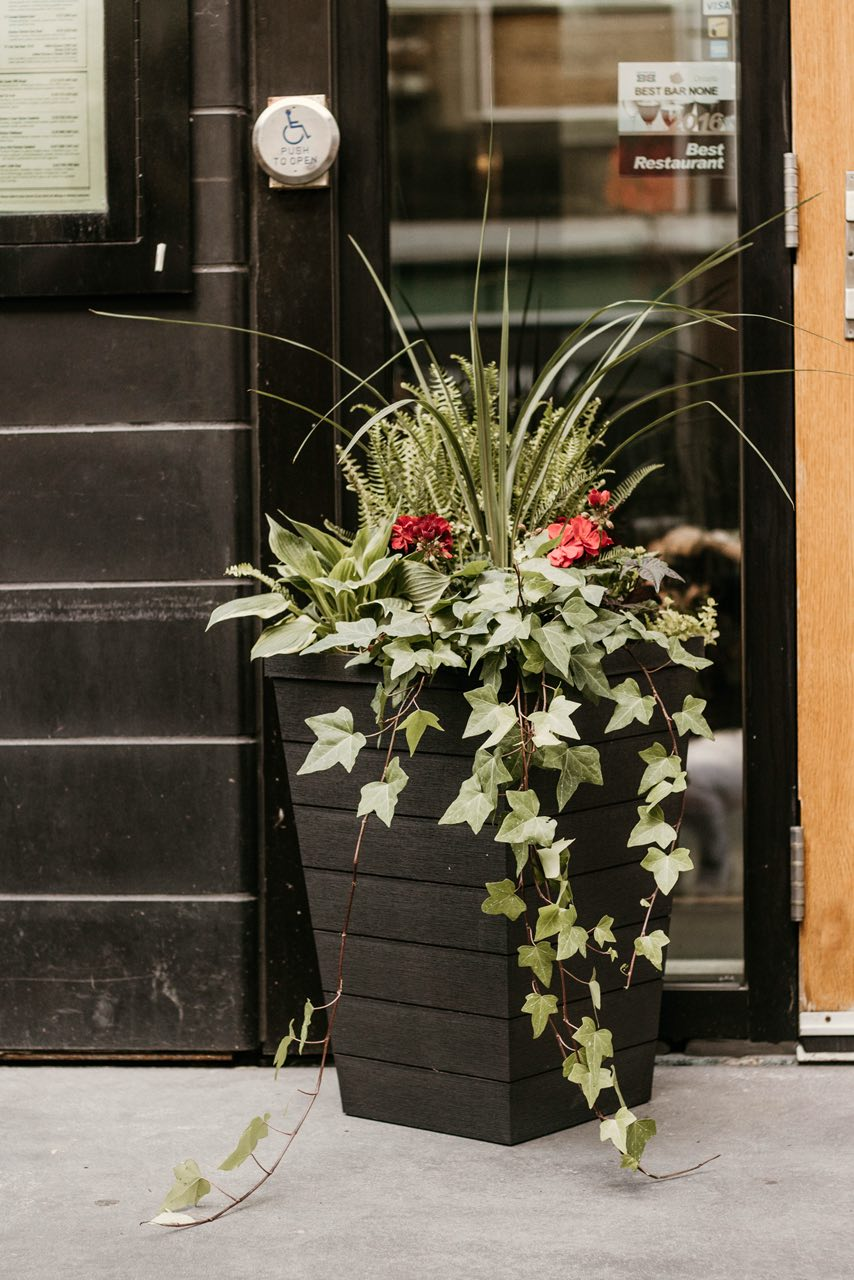 A large, beautiful planter for a restaurant in toronto, Ontario