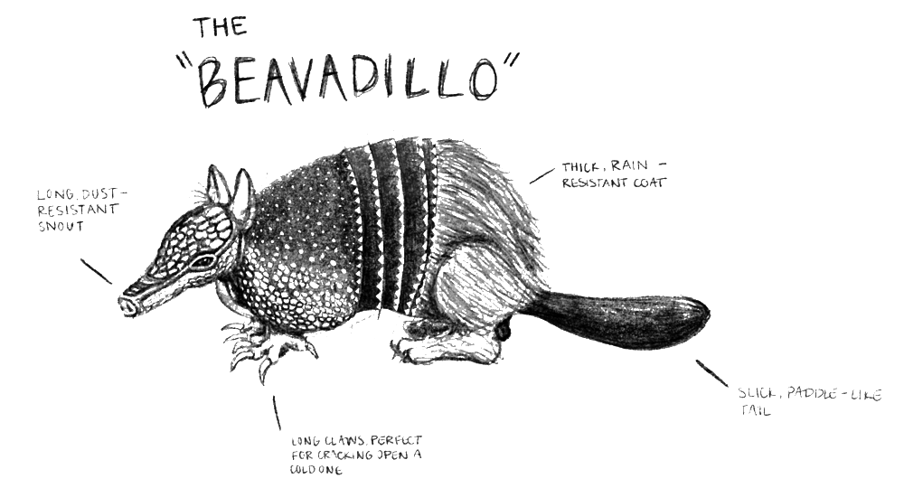 beaverdillo_pencil.png