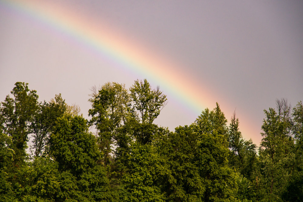 Rainbow, Landscape, Midwest, Color Photograph, Healing Art, Hospital Art, Interior Design, Wall Art