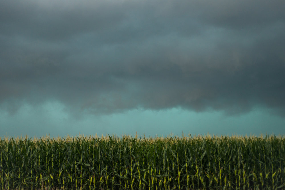 Color Photograph, Midwest, Storm, Sunset, Corn, Clouds, Sky, Interior Design, Wall Art