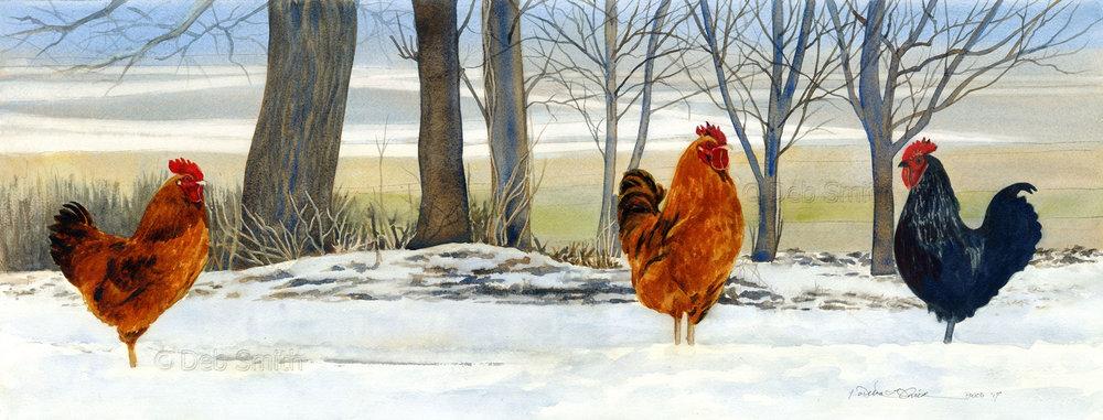 chickens_website_watermarked.jpg