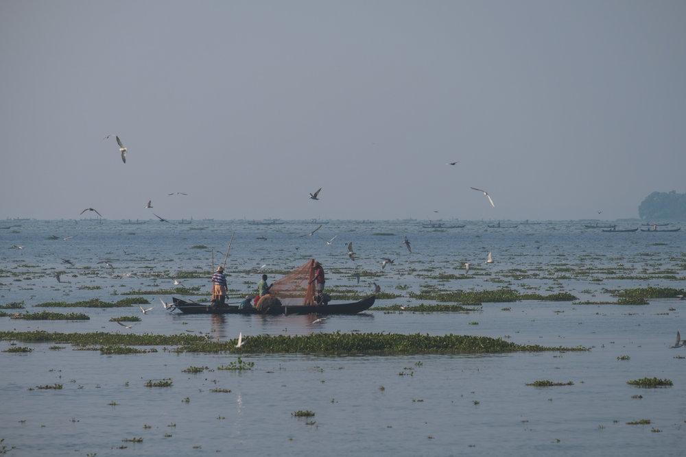 India-20180216-006004.jpg