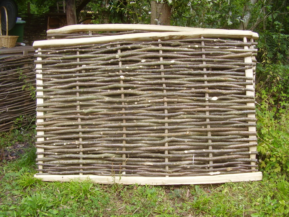 hazel screen 2.JPG