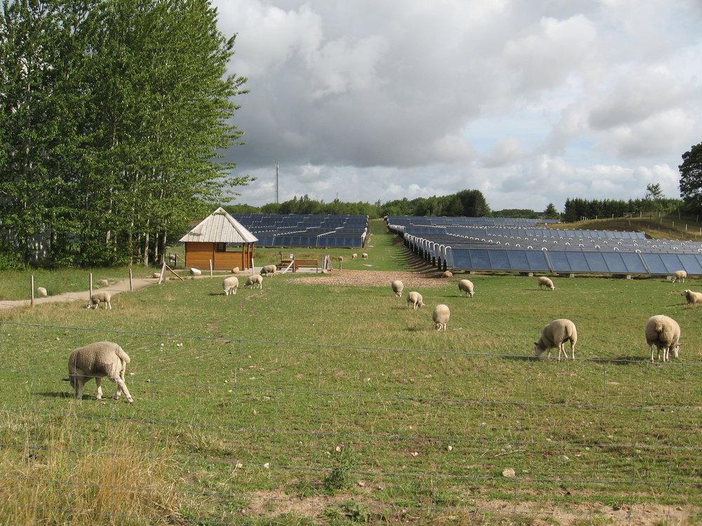 BRÆDSTRUP - Solvarmeanlæg integreret i landskabet