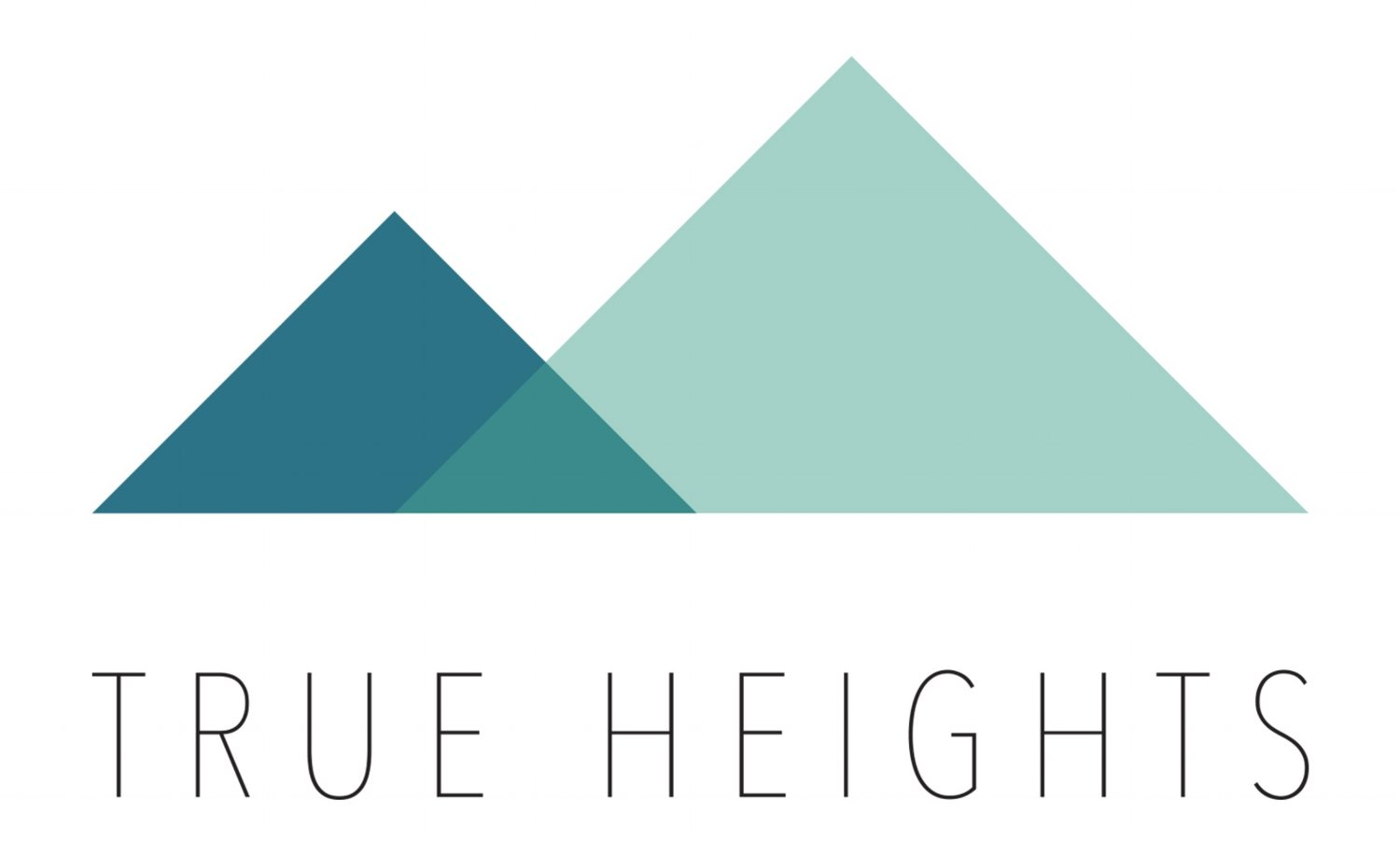 True Heights Consulting