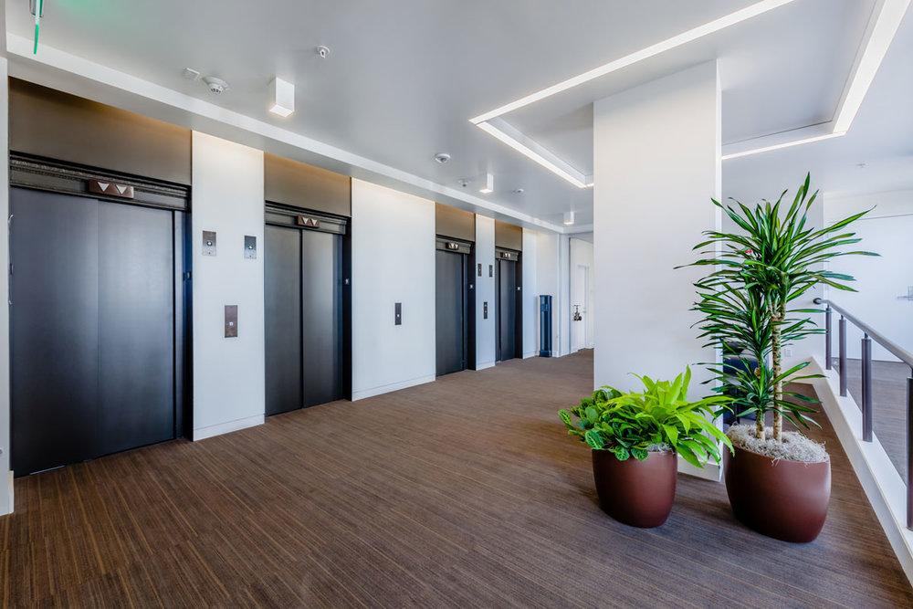 Light filled elevator lobby