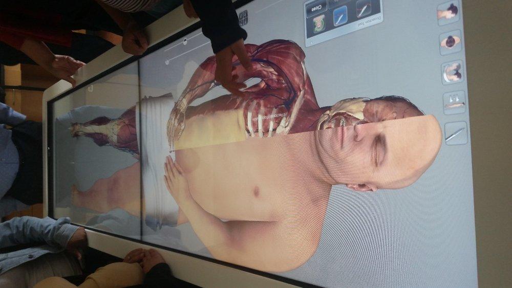 virtual-cadaver.jpg