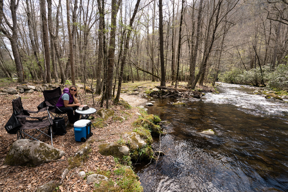 Picnic lunch after a cool morning with the elk herd. This stream is a relaxing point with the bonus that the elk often cross just downstream.
