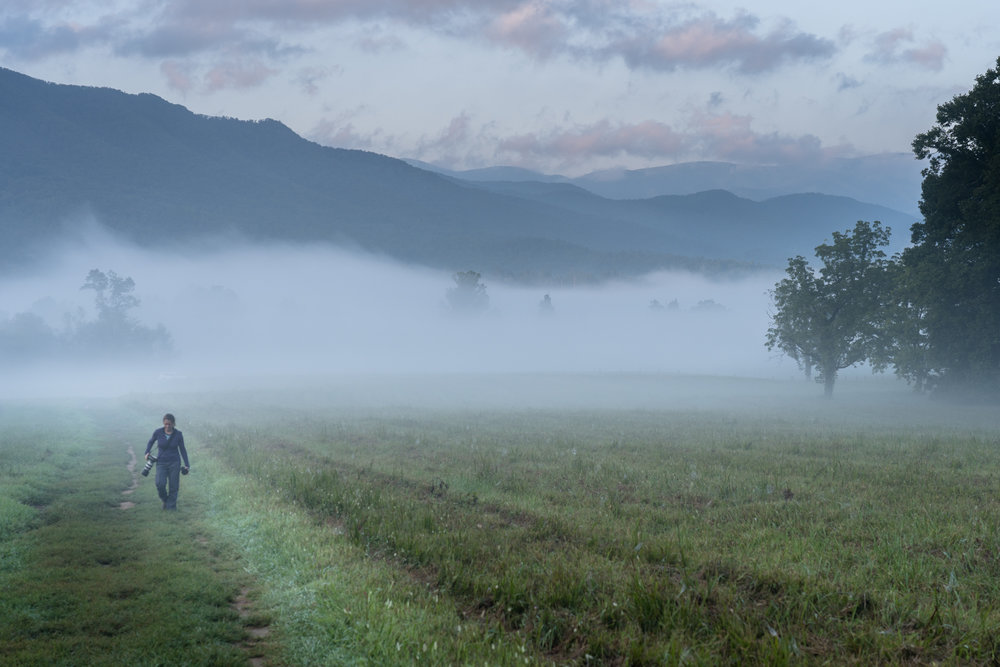 Salwa ( WanderingPhocus.com ) looking for a good spot to capture the morning mist across the valley in Cades Cove.