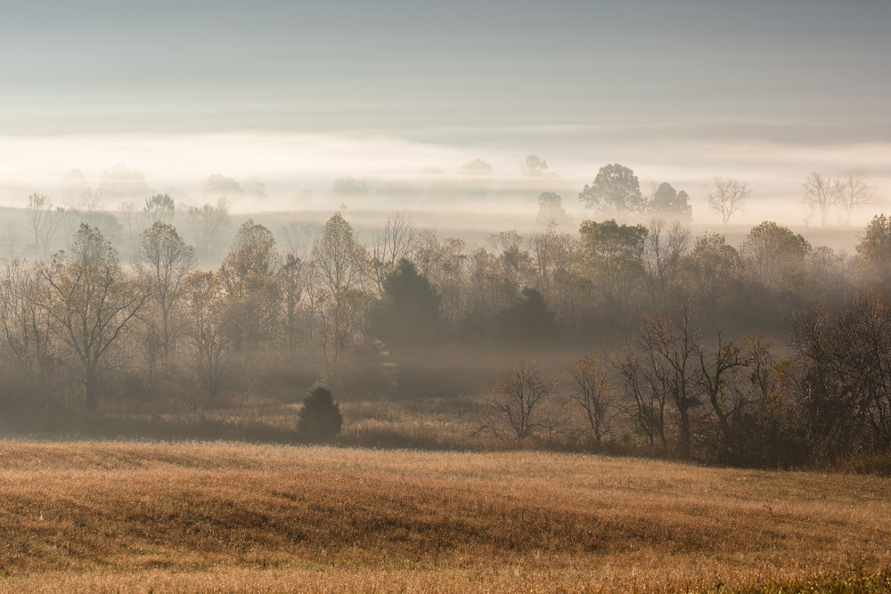 Misty morning across the valley in Cades Cove