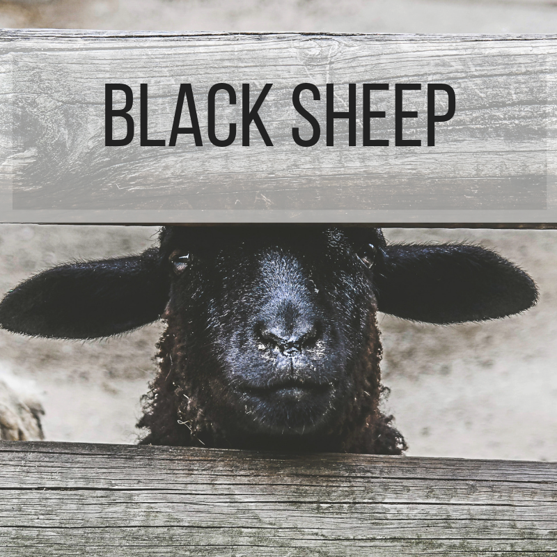 Black Sheep Button.png