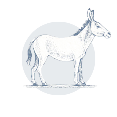 bluemont-vineyard-donkey-icon-watermark-7.jpg