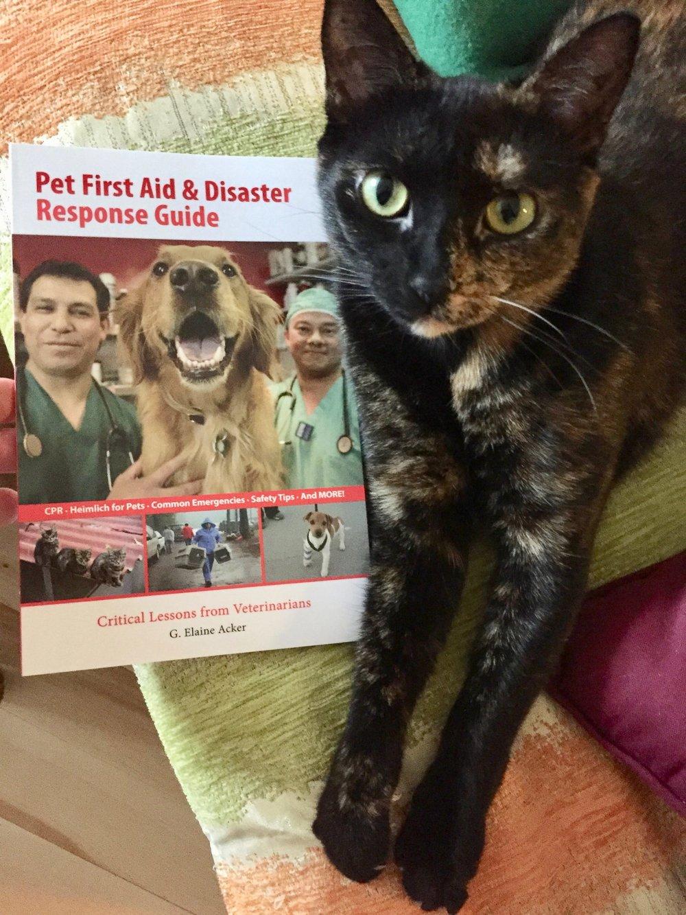 LSE Pet CPR First Aid-min.jpg