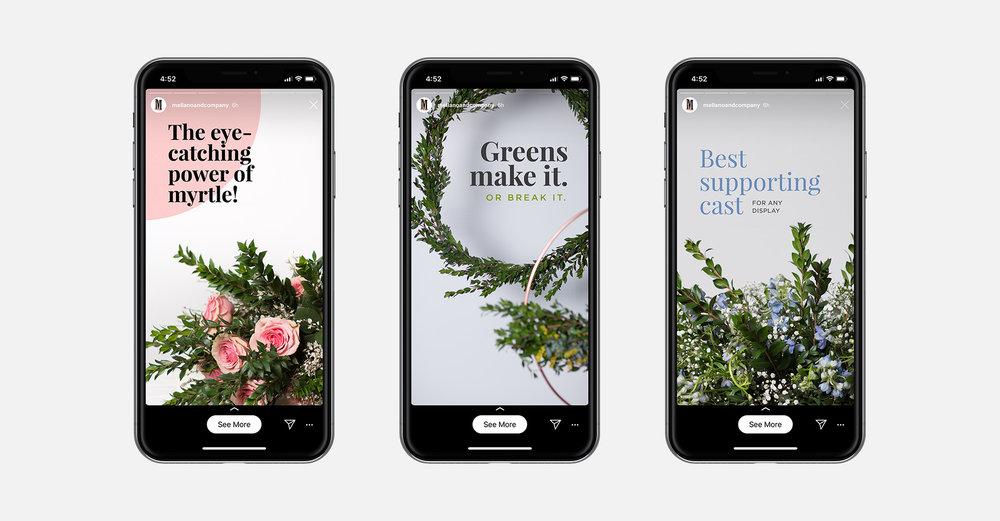 iphone-Layout-2.jpg