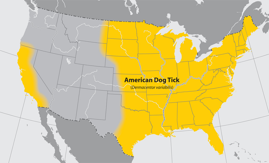 American dog tick distribution (CDC).