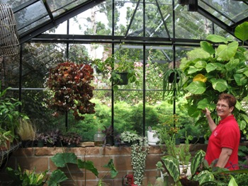 Explore our greenhouse where you will find succulents, lemon trees, seedlings and other plants that need special protection.