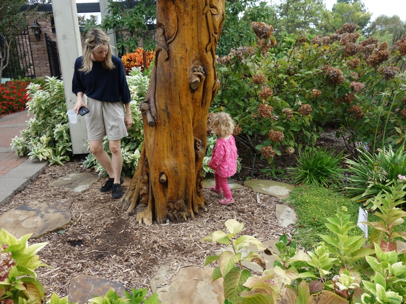 See what you can find hidden in our Discovery Tree created by chainsaw sculptor Clayton Coss.