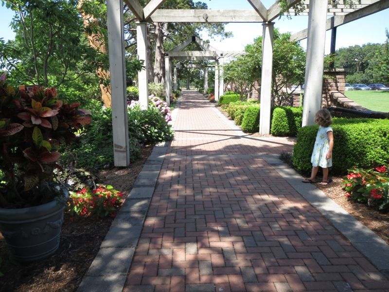 The Entry Garden is populated with flowers, shrubs and ground covers that thrive in dappled shade.