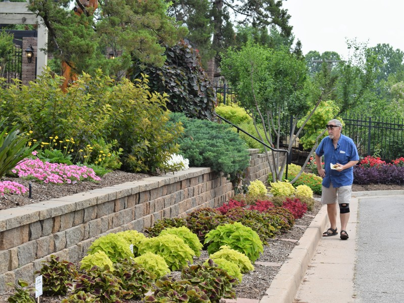 Finally you have arrived at our test beds of annuals. Every year we try the newest cultivars, from impatiens to sun coleus.     And this brings you back to where you started, at the front steps of the Entry Garden.