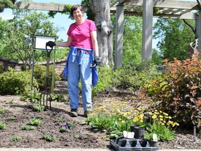 Linnaeus Gardeners have regular maintenance days in the garden.