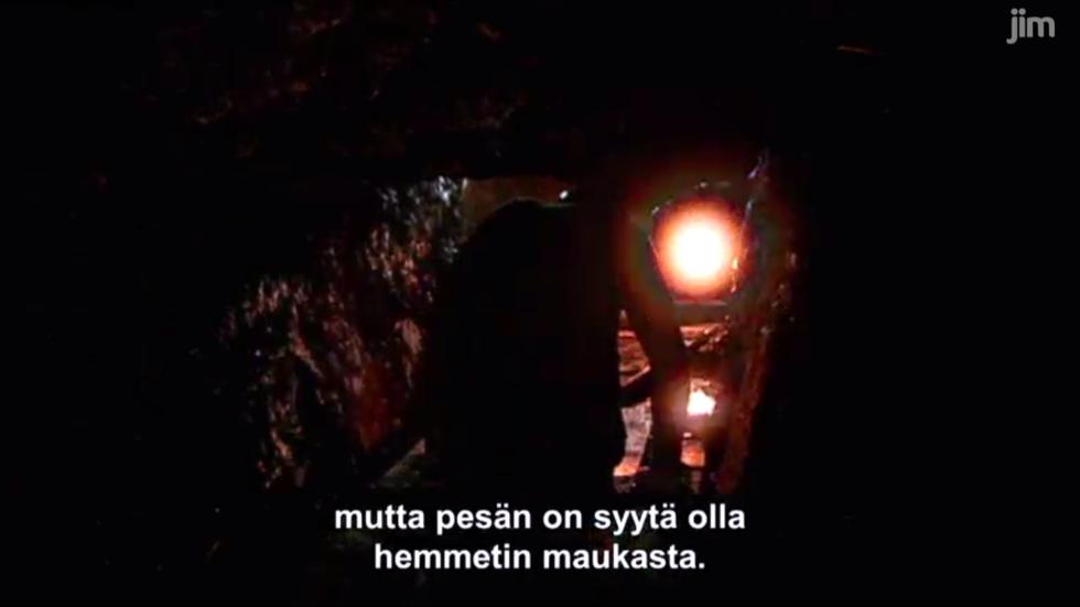 pesan_on_syyta_olla_hemmetin_maukasta.png
