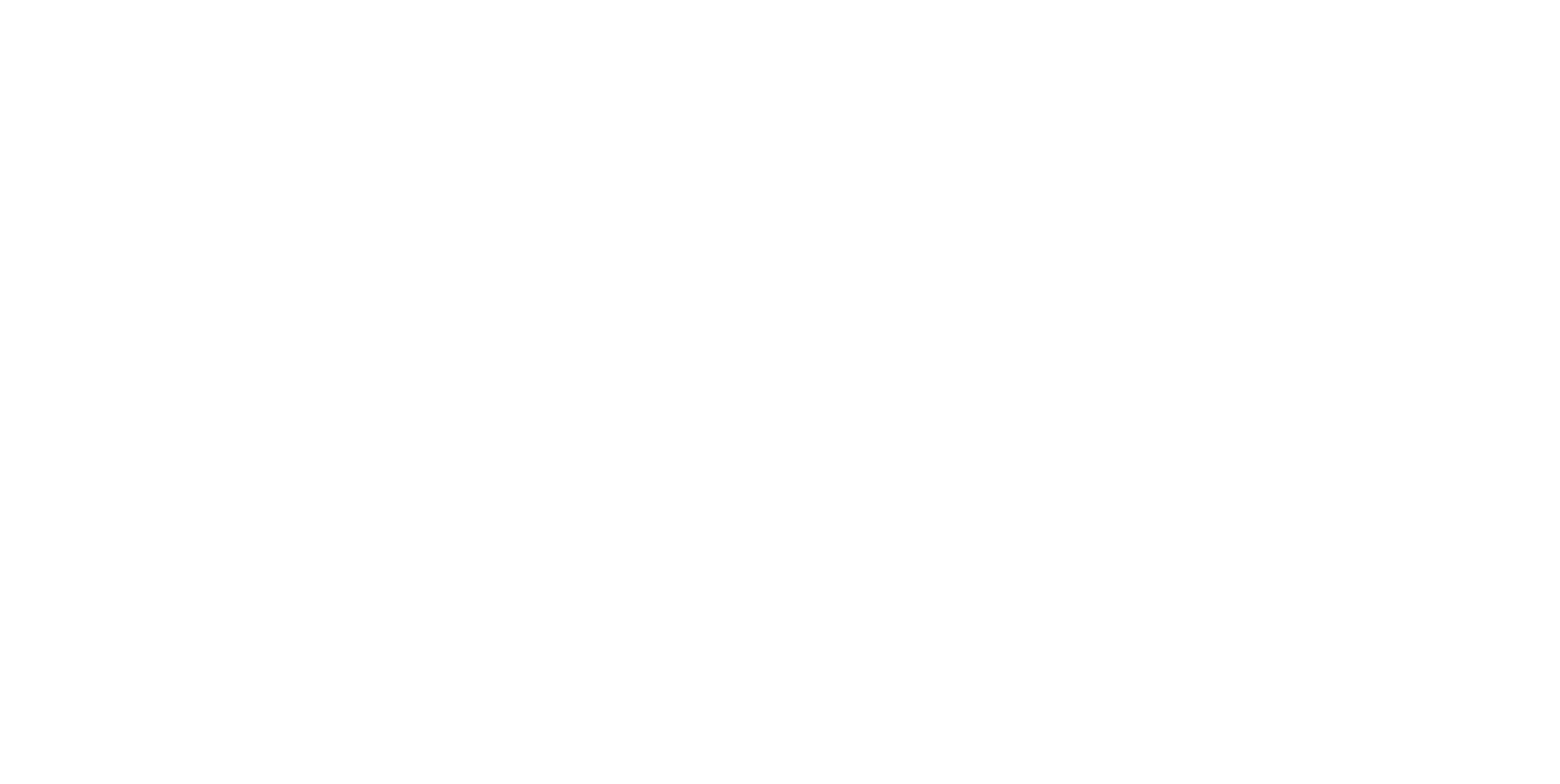 Low Pigeon Coffee Roasters