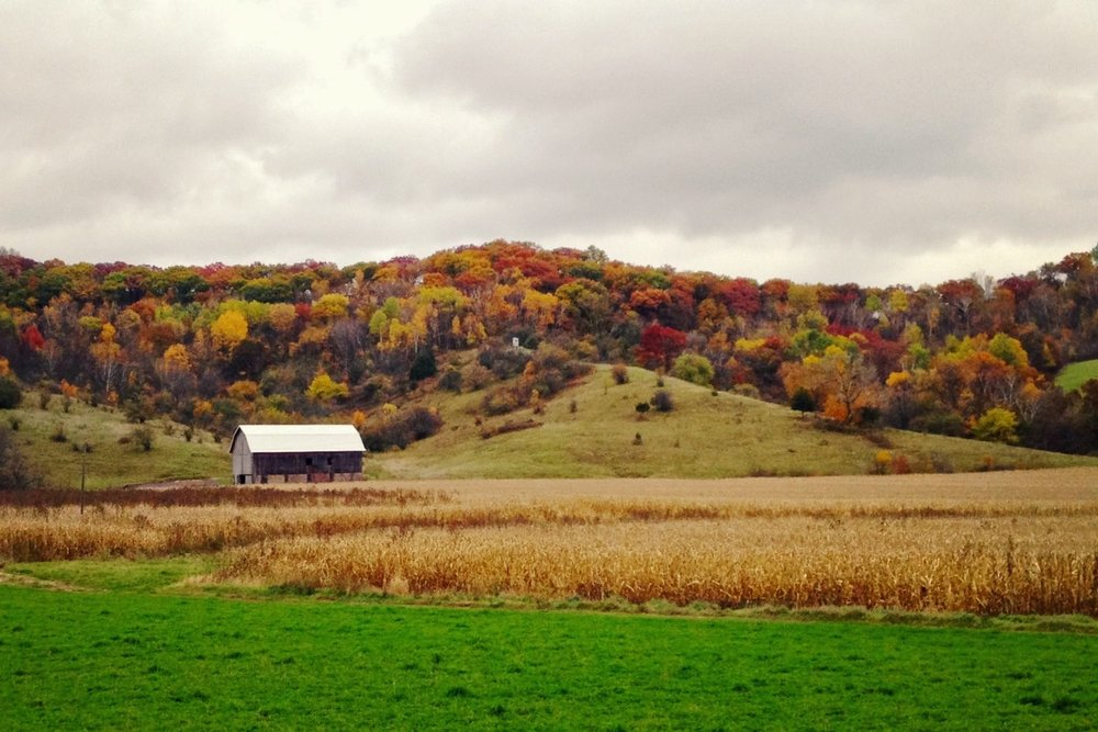 The Coalition - • Driftless Area Land Conservancy• Driftless Defenders• Western Dane Preservation Campaign
