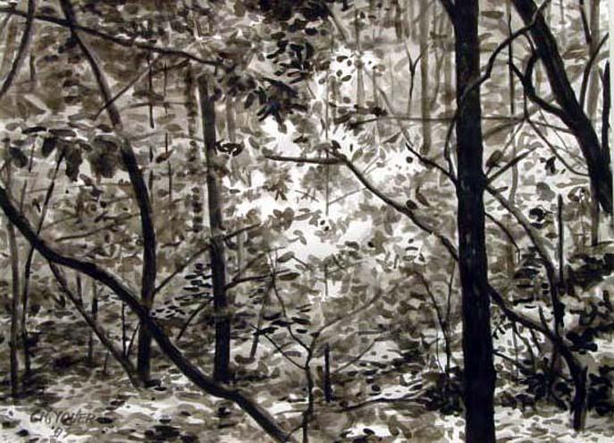 FLUTTER, 2003, ink on paper, 24 x 18