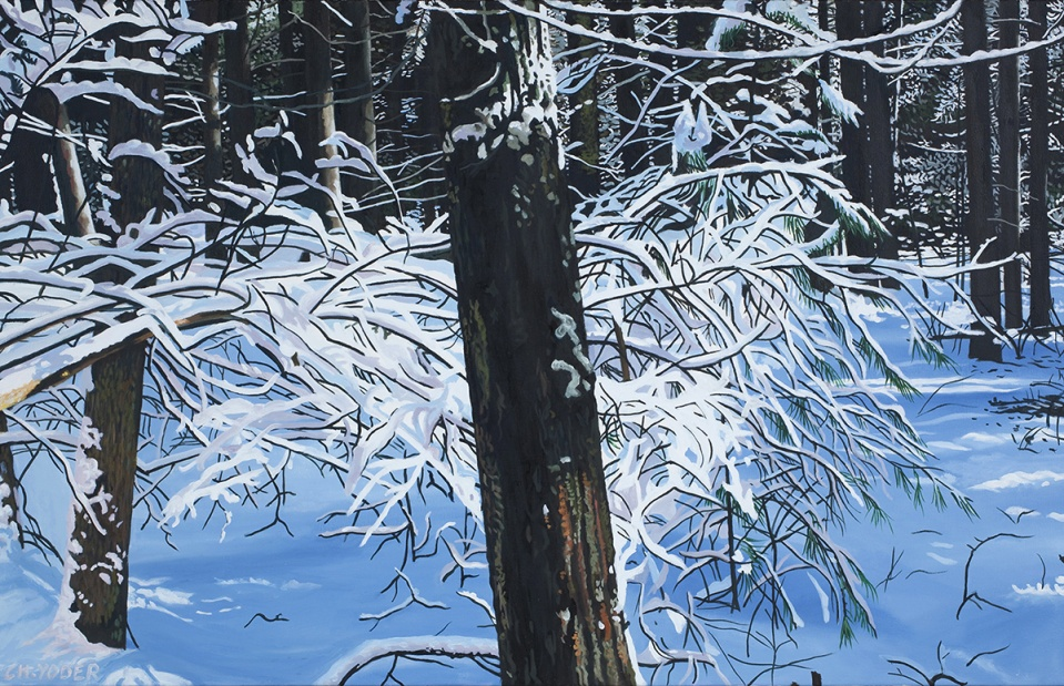 FROZEN ASSETS, 2010, oil on canvas, 28 x 44