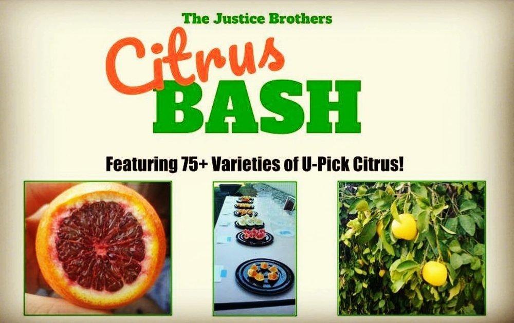 citrus bash.jpg