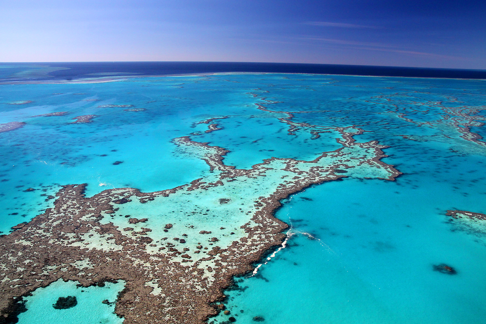 barrier-reef-qld