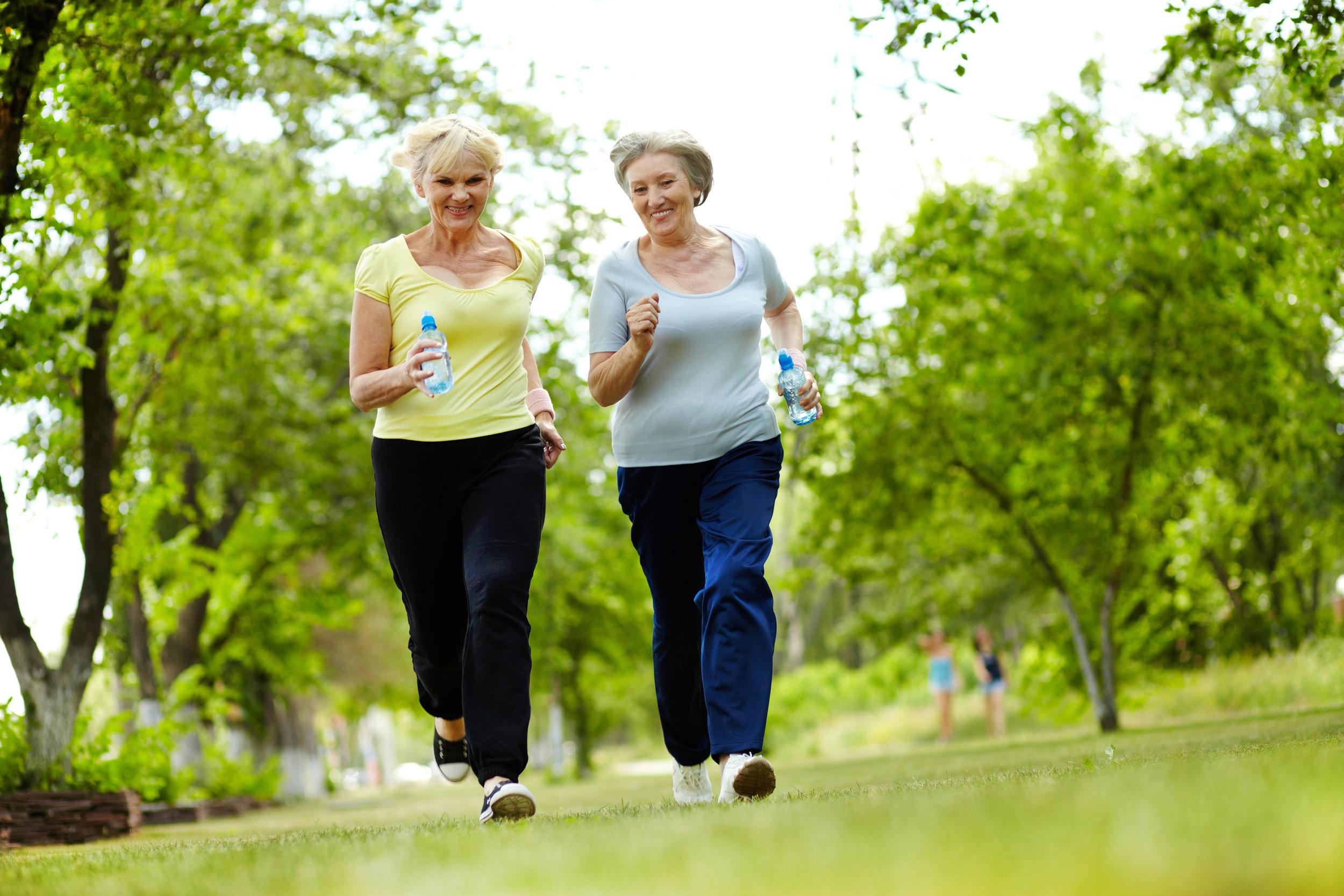 Old ladies walking