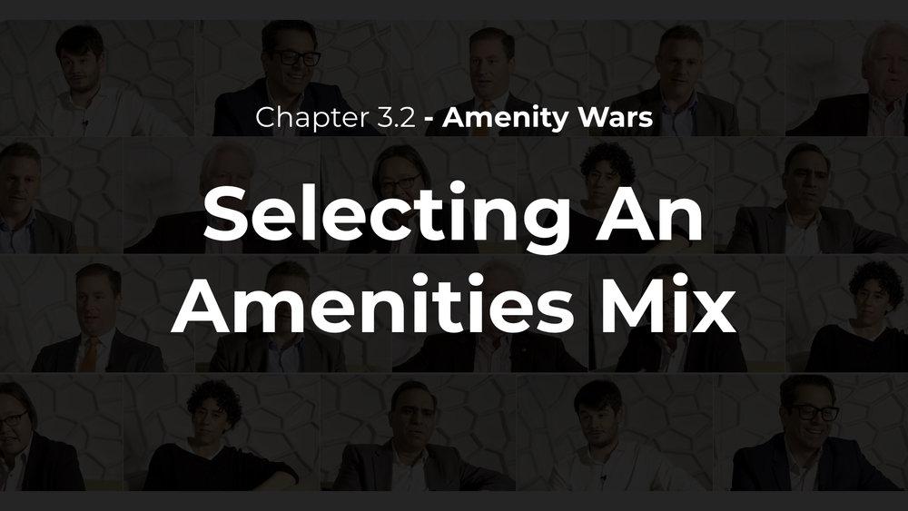 3.2 - Selecting an Amenities Mix