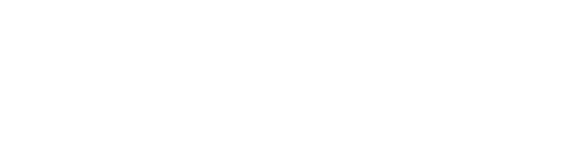 therapy project brain icon white.png