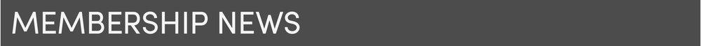 White Gray5.jpg