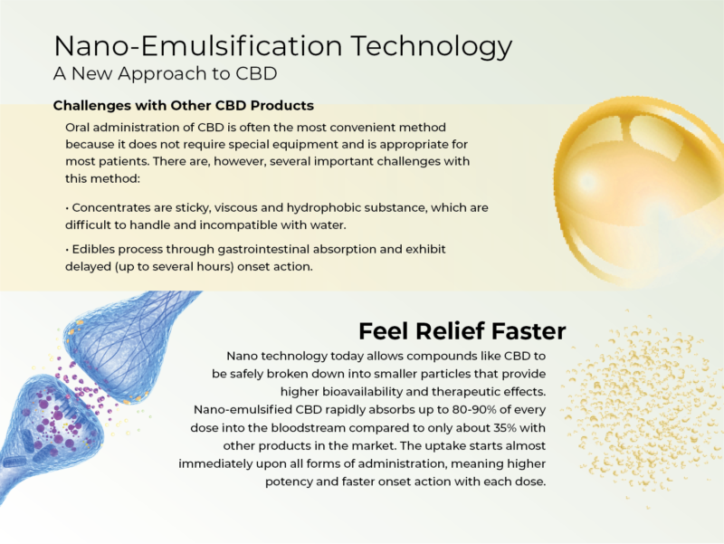 Nano-Infographic-e1536856115798.png