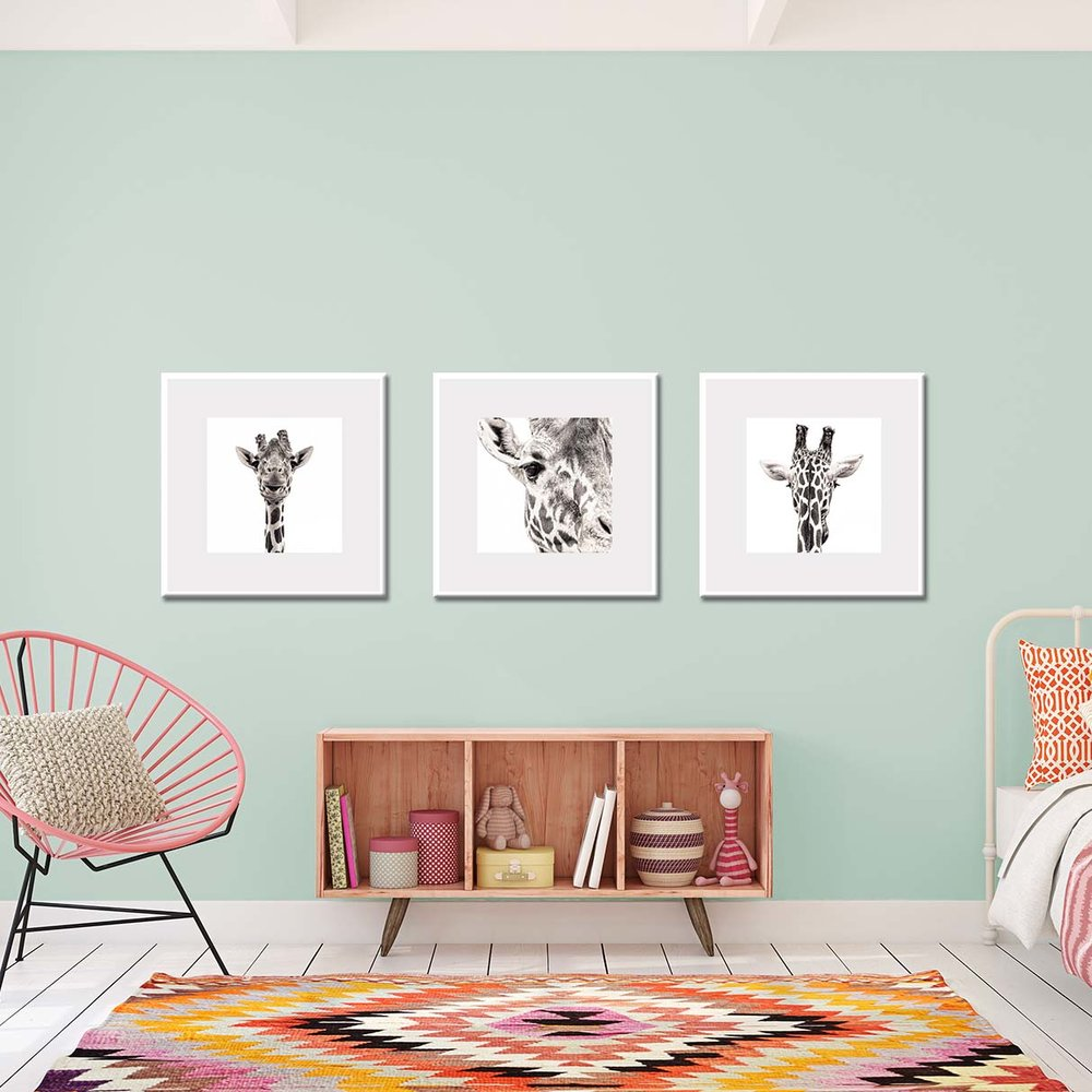 Three prints of giraffes shown in a bedroom settting. Black and white limited edition prints of giraffes by fine art photographer Paul Coghlin