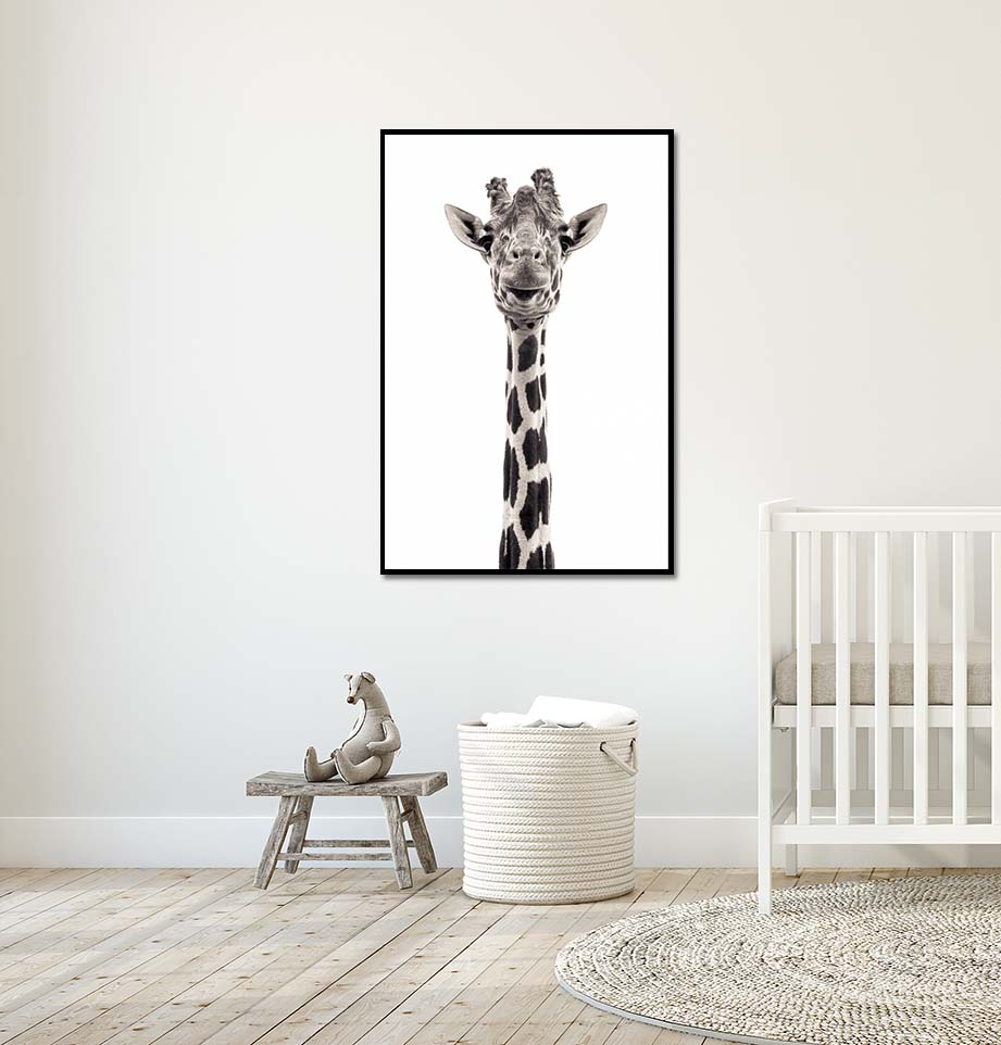 Giraffe V. Limited edition photographic print by fine art photographer Paul Coghlin. Black and white photograph of a tall giraffe in a child's bedroom.