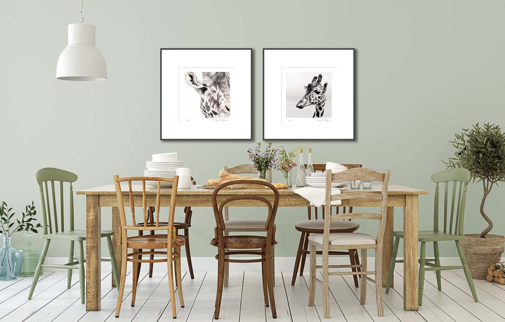 Two giraffe prints on the wall of a living room. Black and white photographic prints by fine art photographer Paul Coghlin.