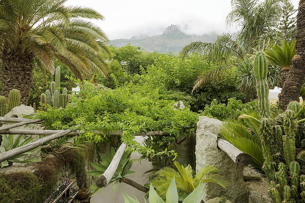 1000_finalshort-listed_view_of_Mount_Epomeo_from_above_main garden enterance.jpg