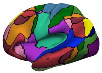 colorful brain copy.jpg