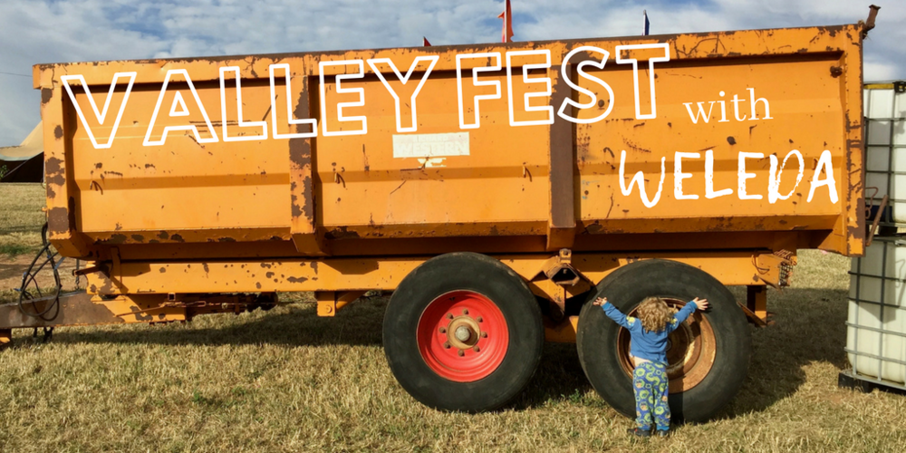VALLEY FEST (1).png